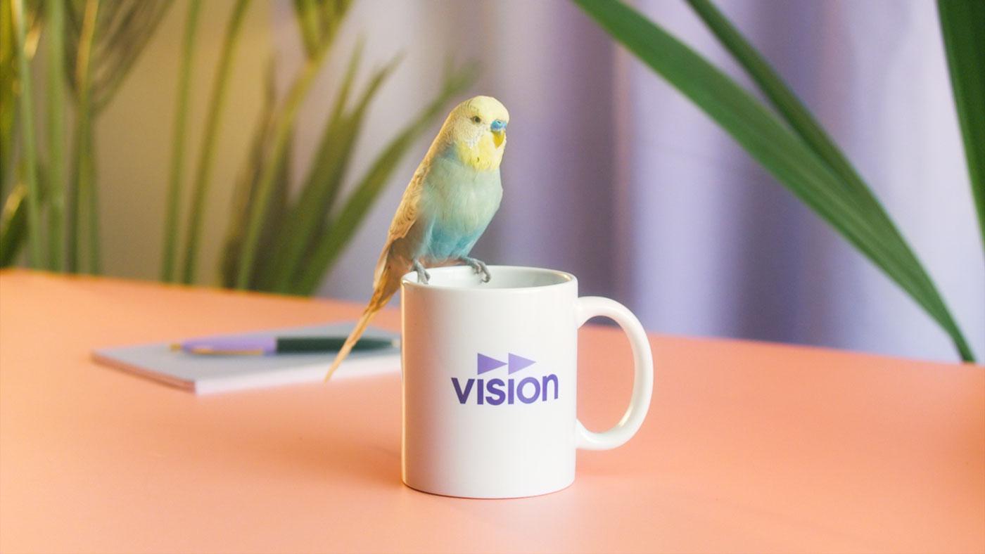 Vision_CherryCobra_10